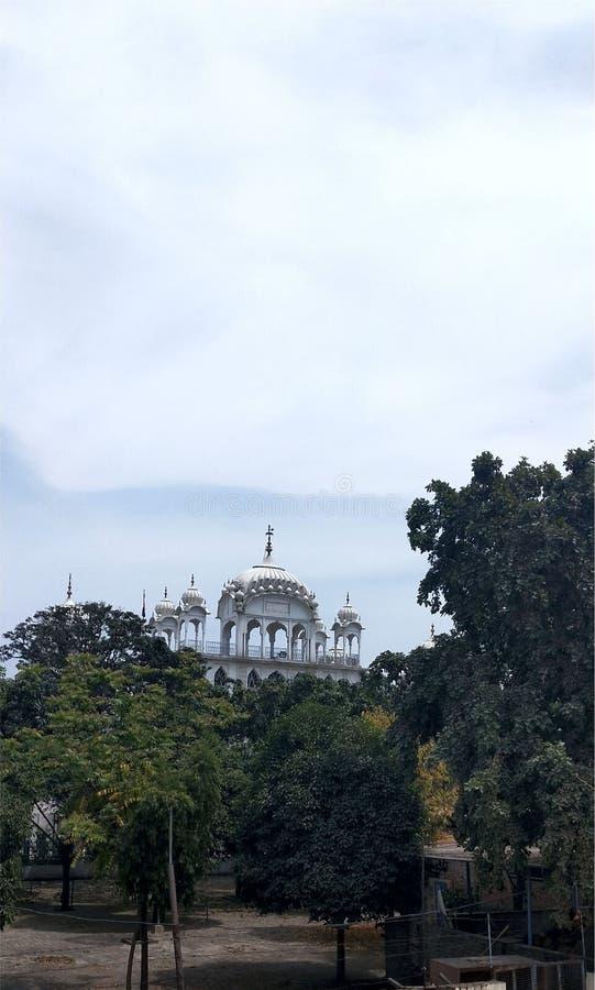 Άσπρη άποψη οχυρών στα δέντρα διανυσματική απεικόνιση