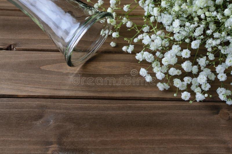 Άσπρη αναπνοή μωρών ` s στο ξύλινο υπόβαθρο στοκ εικόνα