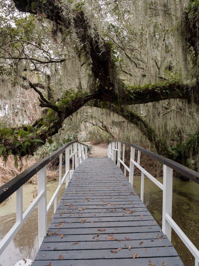 Άσπρη γέφυρα στη φυτεία Magnolia και κήπος κοντά στο Τσάρλεστον, νότια Καρολίνα στοκ εικόνα