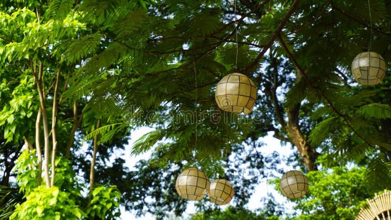 Άσπρη ελαφριά κυκλική διακόσμηση διακοσμήσεων στα δέντρα, τα πράσινα και τις εγκαταστάσεις με το διάστημα για το αντίγραφο στοκ εικόνες