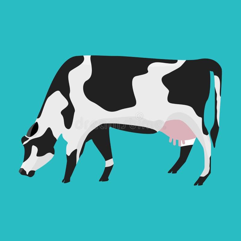 Άσπρη και μαύρη αγελάδα με το επίπεδο και στερεό σχέδιο χρώματος απεικόνιση αποθεμάτων