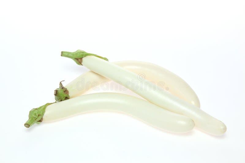 Άσπρη μελιτζάνα στοκ εικόνα