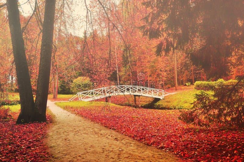 Άσπρη ξύλινη γέφυρα σε ένα πάρκο στοκ εικόνα με δικαίωμα ελεύθερης χρήσης