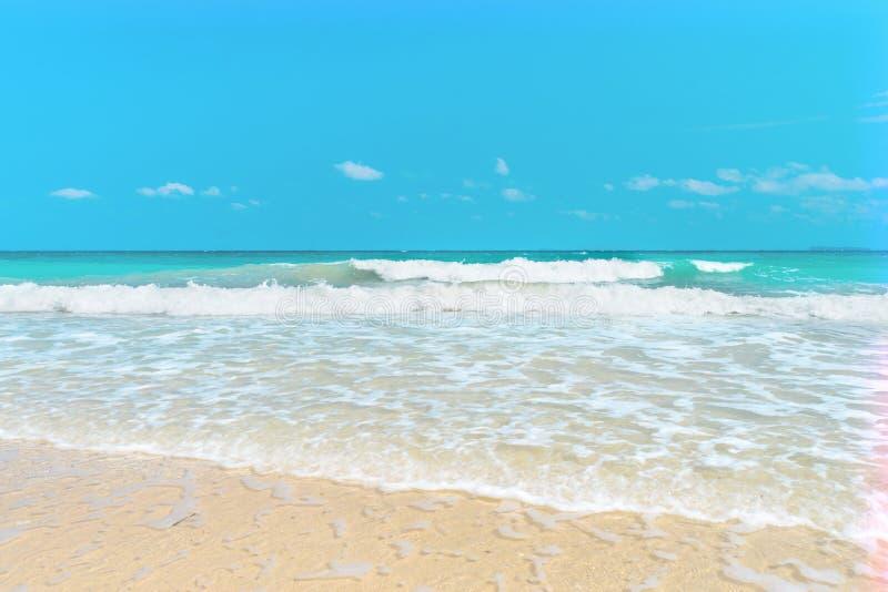 Άσπρη παραλία άμμου με το κρύσταλλο - καθαρίστε το κυανό θαλάσσιο νερό στον κόλπο Grande Sperone στοκ εικόνες