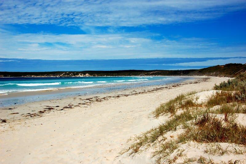Άσπρη παραλία άμμου, νησί καγκουρό, Νότια Αυστραλία. στοκ εικόνα με δικαίωμα ελεύθερης χρήσης