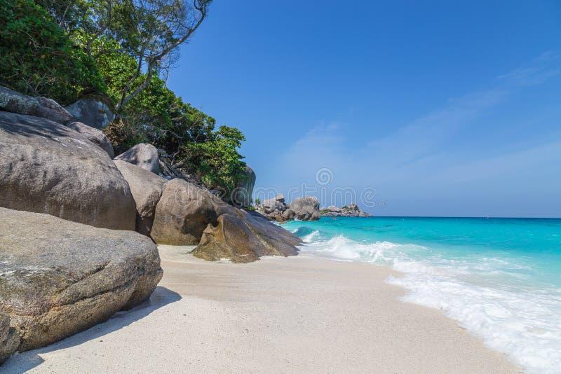 Άσπρη παραλία και τυρκουάζ μπλε θάλασσα Ταϊλάνδη άμμου νησιών Similan στοκ εικόνες