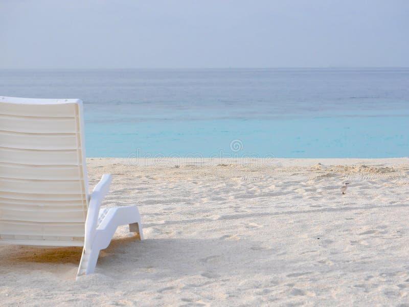 Άσπρη πλαστική καρέκλα παραλιών σε μια άσπρη παραλία άμμου με το πουλί μωρών στοκ φωτογραφία με δικαίωμα ελεύθερης χρήσης