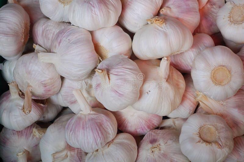 Άσπρη σύσταση σωρών σκόρδου στοκ φωτογραφίες