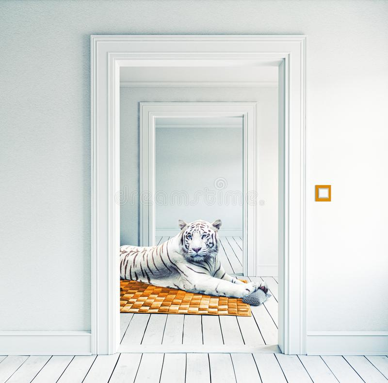 Άσπρη τίγρη στον πορτοκαλή τάπητα ελεύθερη απεικόνιση δικαιώματος