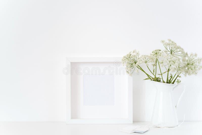 Άσπρη τετραγωνική χλεύη πλαισίων επάνω με ένα Aegopodium στην κανάτα Πρότυπο για το απόσπασμα, προώθηση, τίτλος στοκ φωτογραφίες με δικαίωμα ελεύθερης χρήσης