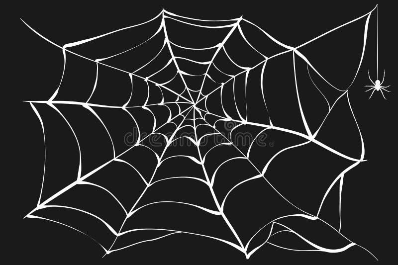 Άσπροι ιστός αράχνης και αράχνη στο μαύρο υπόβαθρο απεικόνιση αποθεμάτων