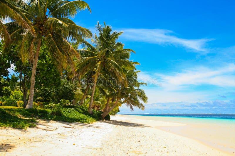 """Άσπρος αμμώδης παράδεισος παραλιών Manase, τροπικοί φοίνικες και τυρκουάζ ωκεάνια λιμνοθάλασσα, νησί Savai """"ι στοκ εικόνες με δικαίωμα ελεύθερης χρήσης"""
