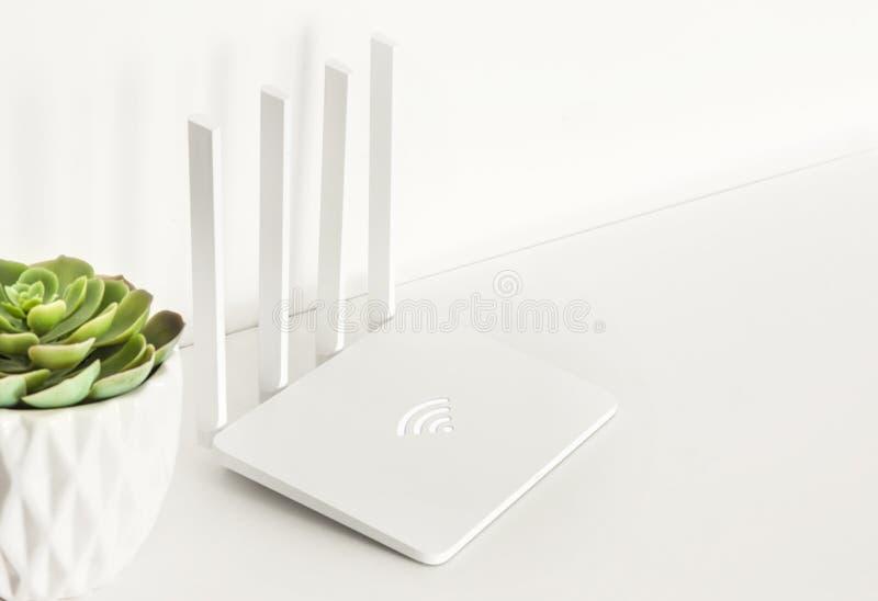 Άσπρος δρομολογητής wifi με τις εγχώριες εγκαταστάσεις succulent στο άσπρο υπόβαθρο μινιμαλισμός στοκ εικόνες