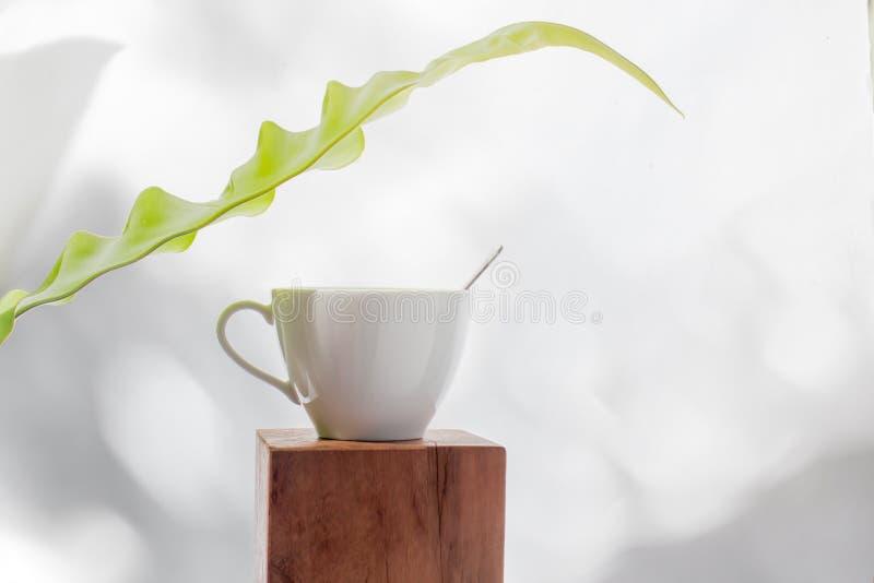 Άσπρος καφές φλυτζανιών με το μικρό πράσινο φύλλο στοκ φωτογραφία με δικαίωμα ελεύθερης χρήσης