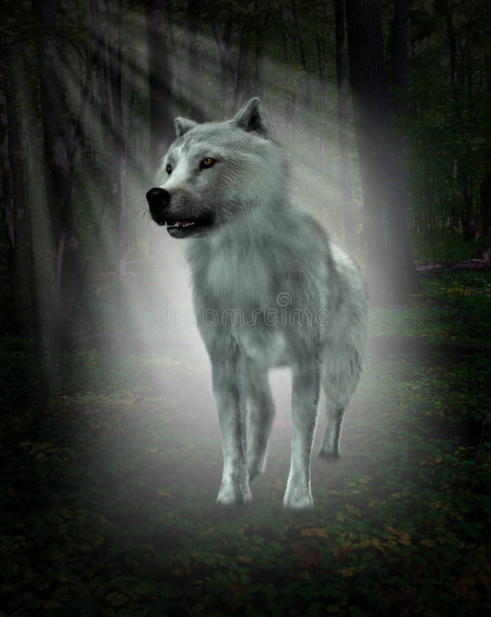 Άσπρος λύκος, δασική απεικόνιση στοκ φωτογραφία με δικαίωμα ελεύθερης χρήσης