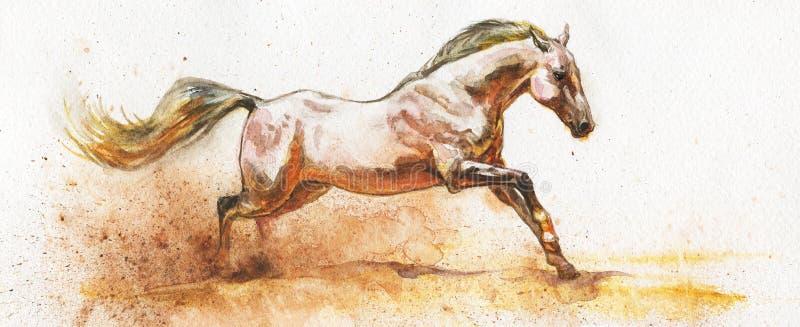 Άσπρο άλογο Watercolor διανυσματική απεικόνιση