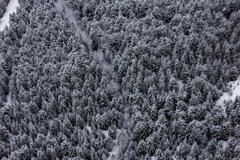 Άσπρο βουνό στοκ φωτογραφία με δικαίωμα ελεύθερης χρήσης