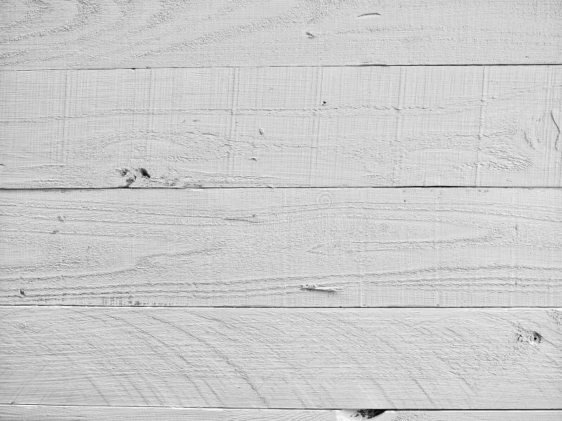άσπρο δάσος στοκ εικόνα