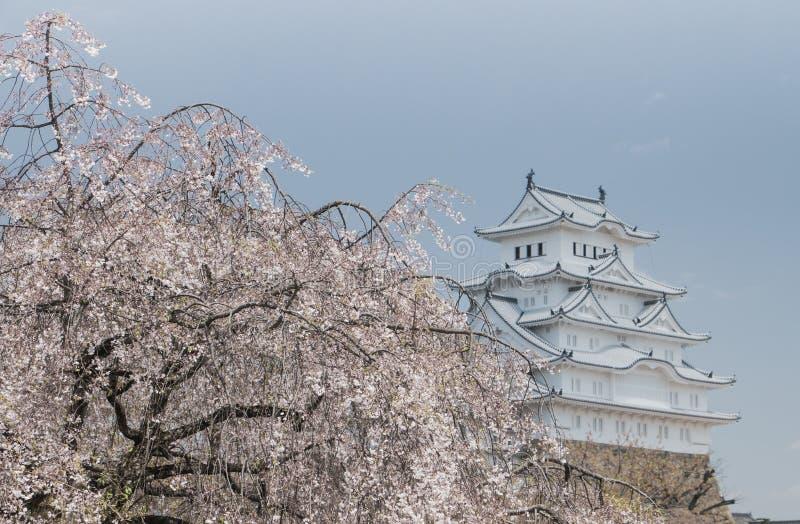 Άσπρο κάστρο Himeji Ιαπωνία τσικνιάδων στοκ φωτογραφία