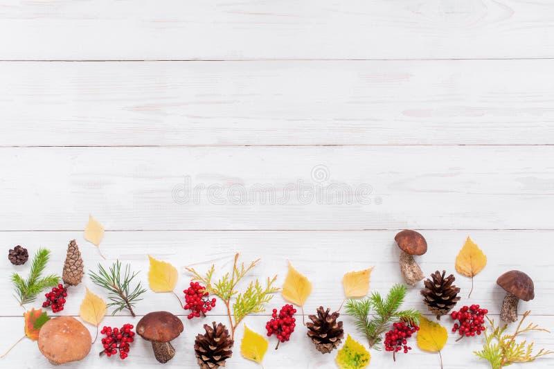 Άσπρο κατασκευασμένο ξύλινο υπόβαθρο με τη διακόσμηση φθινοπώρου στοκ εικόνα
