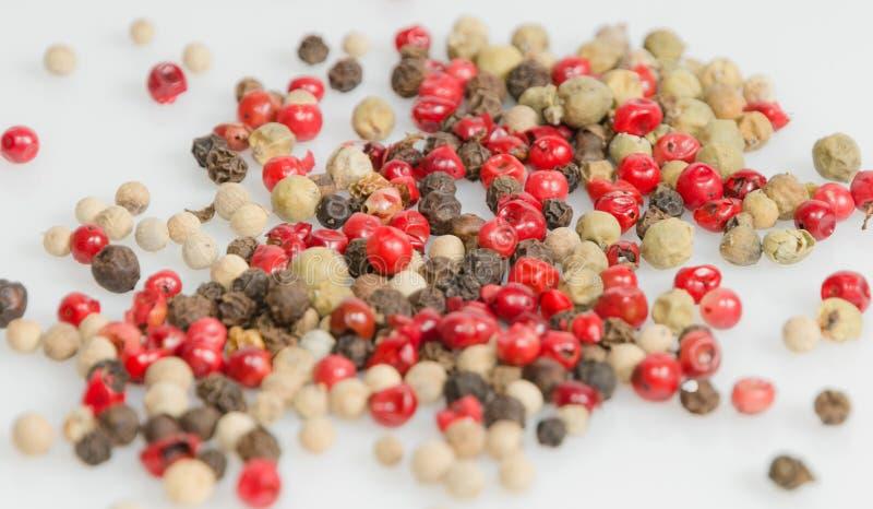 Άσπρο, μαύρο, κόκκινο και πράσινο πιπέρι στοκ εικόνα