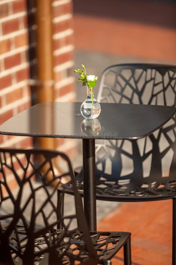 Άσπρο λουλούδι στο βάζο που στέκεται στον πίνακα στον υπαίθριο καφέ στοκ φωτογραφίες με δικαίωμα ελεύθερης χρήσης