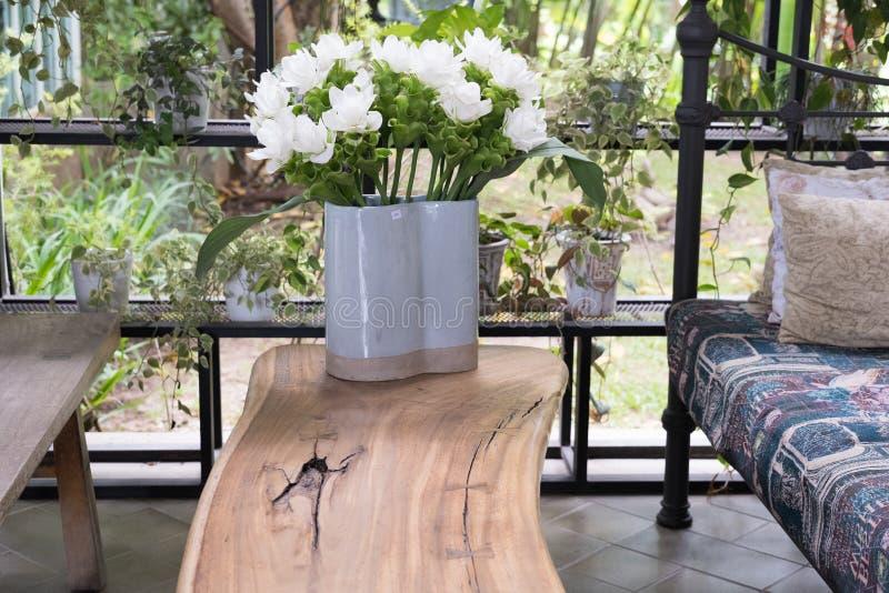 άσπρο λουλούδι τουλιπών του Σιάμ στο βάζο στον ξύλινο πίνακα στο nea καθιστικών στοκ εικόνες