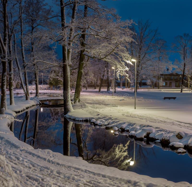 Άσπρο πάρκο χειμερινής νύχτας χιονιού με τη λίμνη, τη γέφυρα και το φανάρι στοκ εικόνα με δικαίωμα ελεύθερης χρήσης