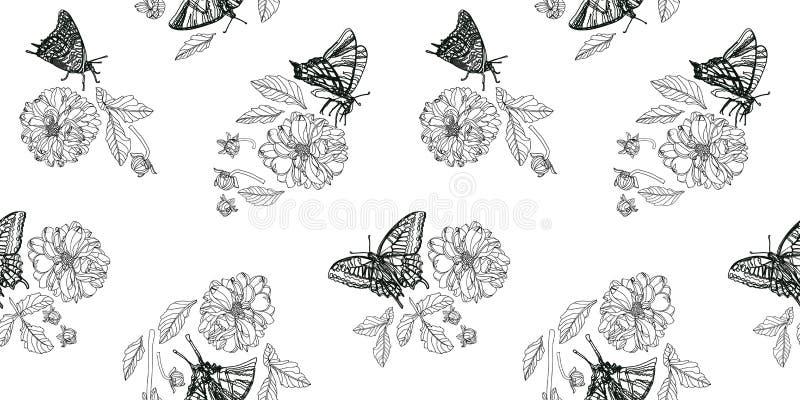 Άσπρο σχέδιο με την πεταλούδα και floral ελεύθερη απεικόνιση δικαιώματος