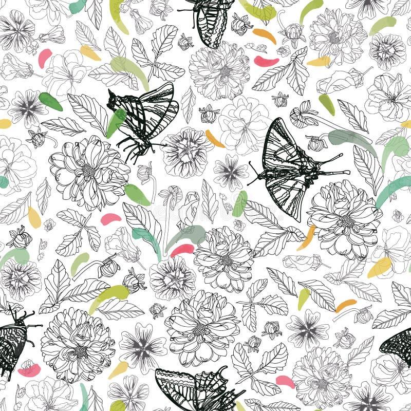 Άσπρο σχέδιο με την πεταλούδα και floral διανυσματική απεικόνιση