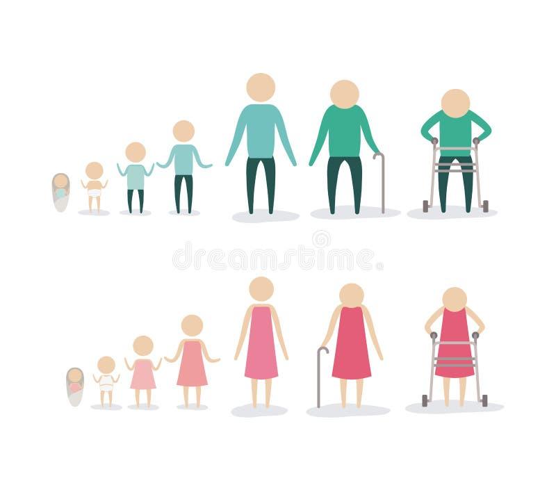Άσπρο υπόβαθρο με τις γηράσκουσες νεολαίες ανθρώπινης ζωής ηλικίας εικονογραμμάτων σκιαγραφιών χρώματος που αυξάνονται τους θηλυκ διανυσματική απεικόνιση