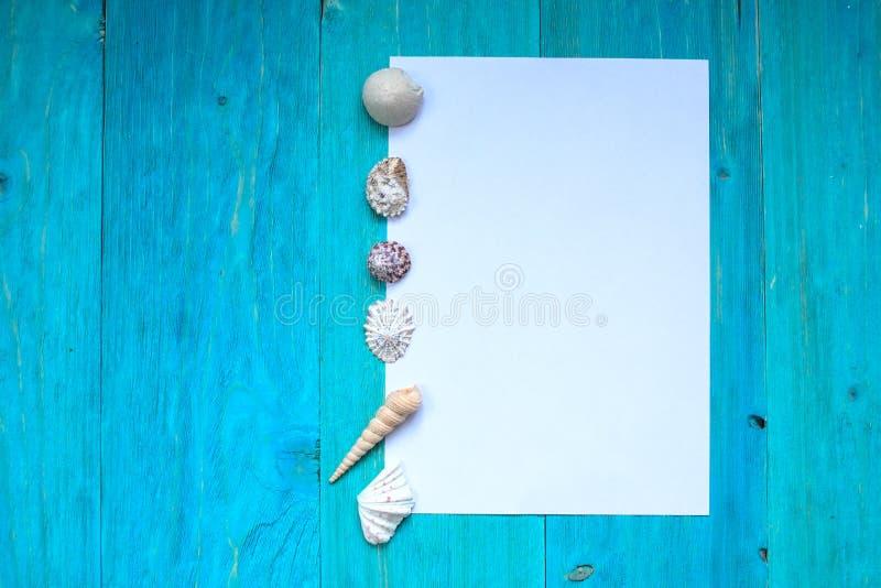 Άσπρο φύλλο του εγγράφου (διάστημα για το κείμενο), θαλασσινά κοχύλια, μπλε ξύλο στοκ φωτογραφία με δικαίωμα ελεύθερης χρήσης