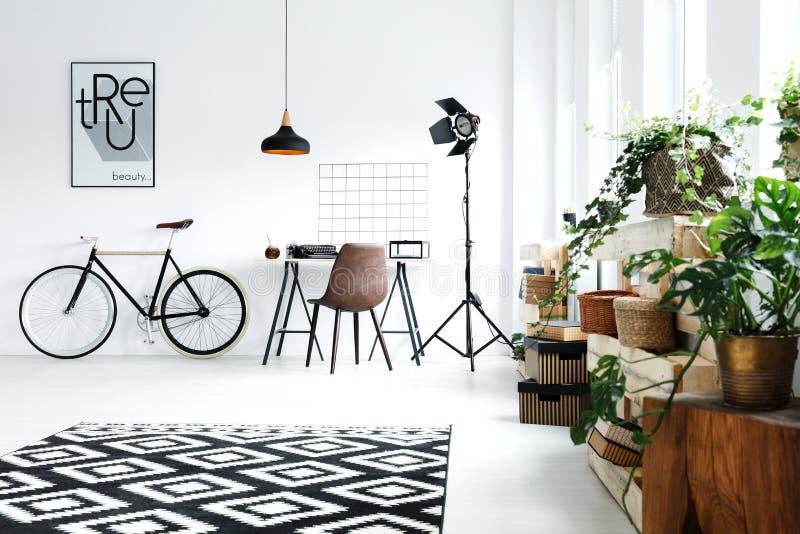 Άσπρο δωμάτιο με τις πράσινες εγκαταστάσεις στοκ φωτογραφίες με δικαίωμα ελεύθερης χρήσης