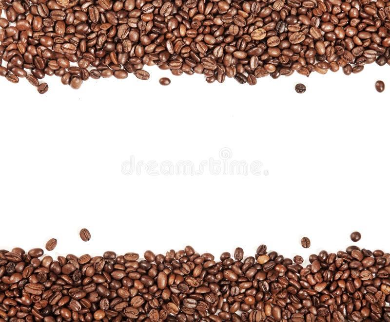Άσπρο λωρίδα μέσα στα καφετιά ψημένα φασόλια καφέ στοκ εικόνα με δικαίωμα ελεύθερης χρήσης