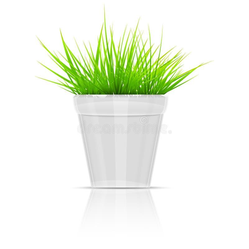 Άσπρο Flowerpot με την πράσινη χλόη. απεικόνιση αποθεμάτων