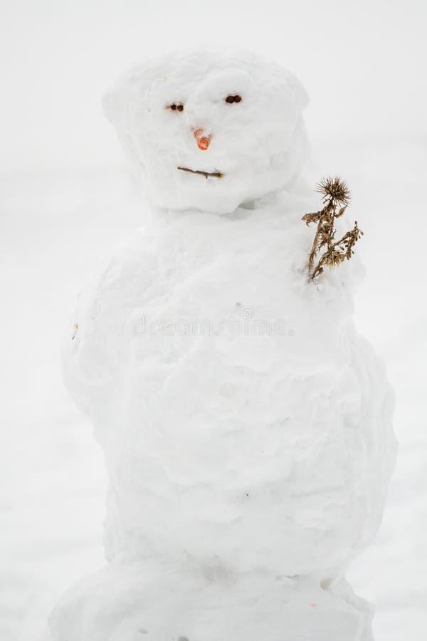 Άσχημος χιονάνθρωπος στοκ εικόνα