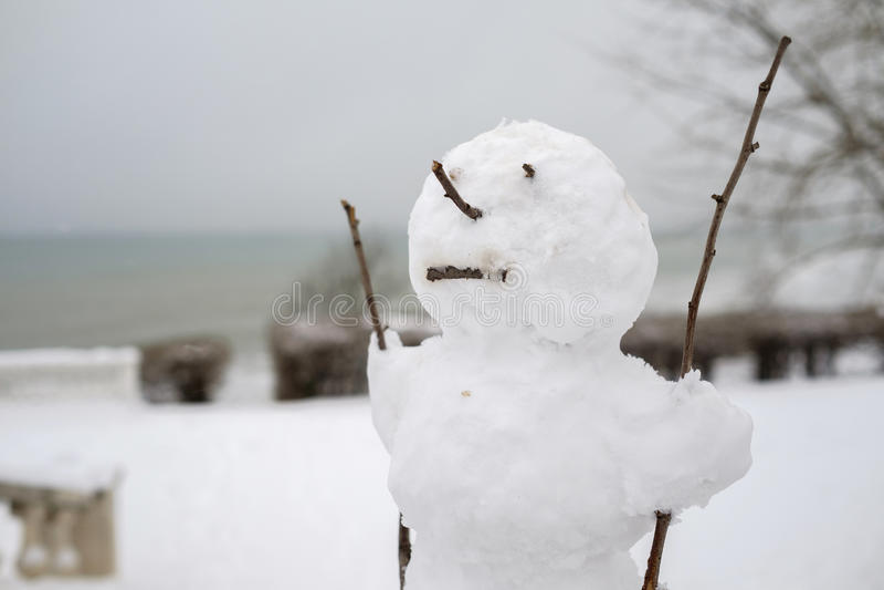 Άσχημος χιονάνθρωπος στοκ εικόνες