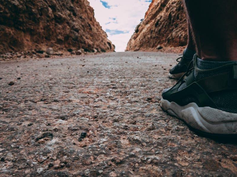 Άτομα που περπατούν προς τα εμπρός στοκ εικόνες