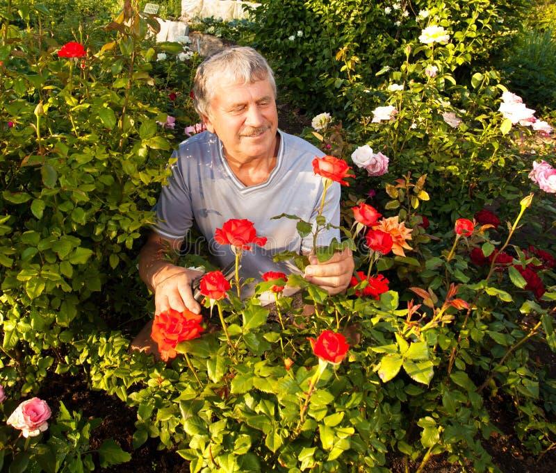 άτομο κήπων στοκ φωτογραφία με δικαίωμα ελεύθερης χρήσης