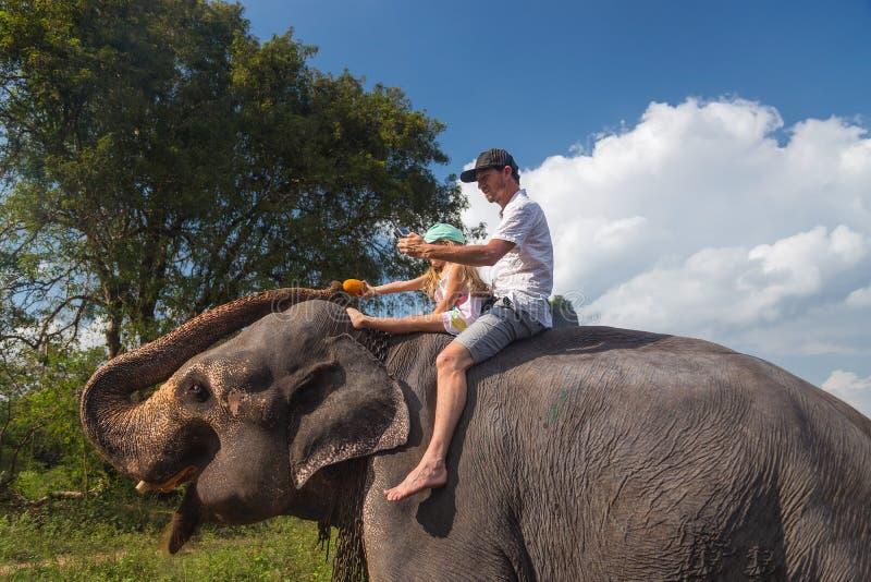 Άτομο και παιδί που οδηγούν στην πλάτη του ελέφαντα, που ταΐζει την με τα φρούτα στοκ εικόνα