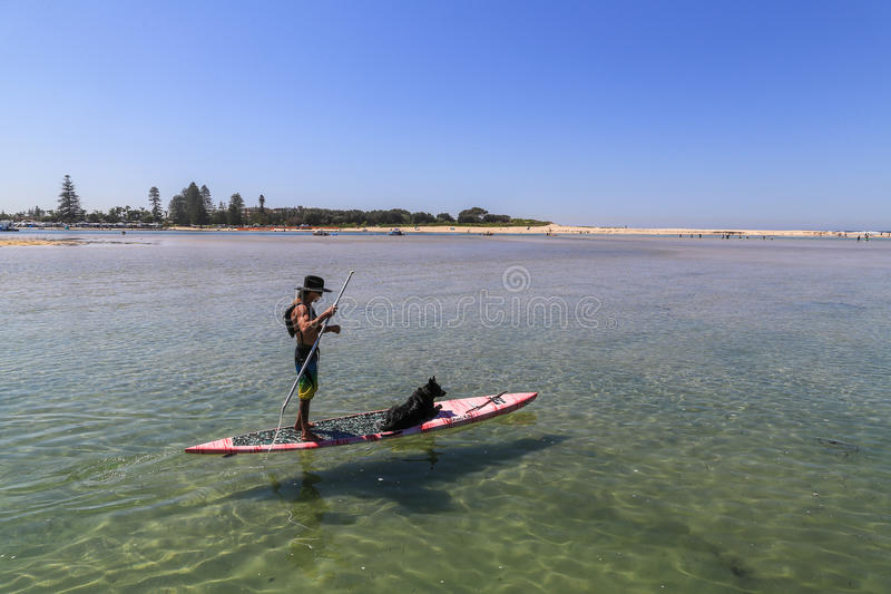 Download Άτομο και σκυλί στον πίνακα, λιμένας Stephens, Αυστραλία Εκδοτική Φωτογραφία - εικόνα από κάπρων, θάλασσα: 62714332