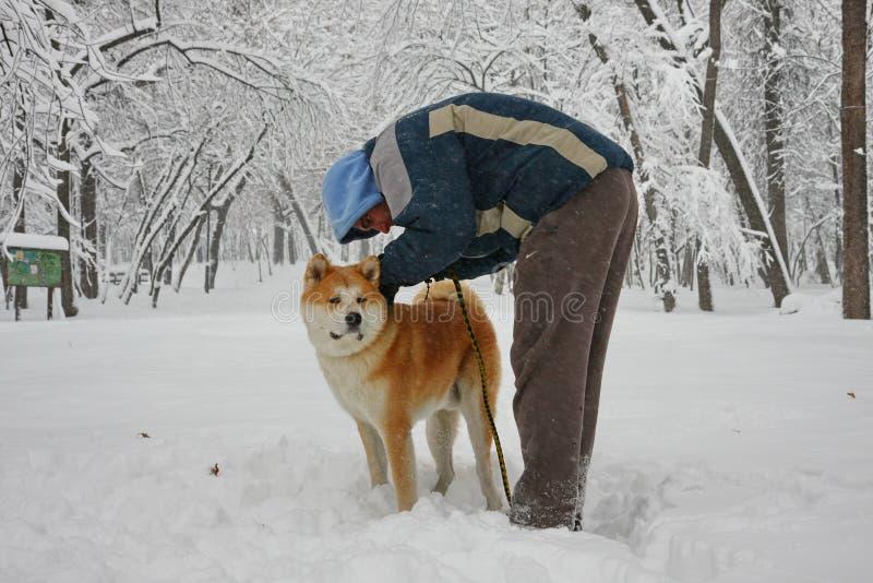 Άτομο και σκυλί στο χιόνι στοκ εικόνα με δικαίωμα ελεύθερης χρήσης