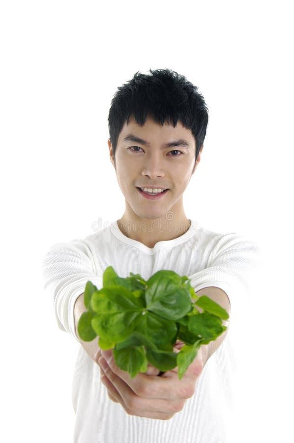 Άτομο με ένα φυτό - στοκ εικόνα με δικαίωμα ελεύθερης χρήσης