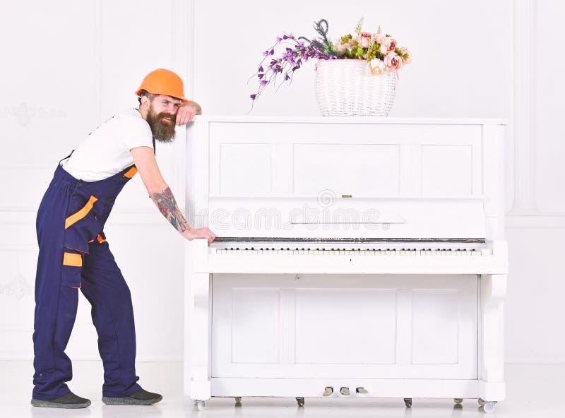 Άτομο με τον εργαζόμενο γενειάδων στις ωθήσεις κρανών και φορμών, προσπάθειες να κινηθεί το πιάνο, άσπρο υπόβαθρο Ο φορτωτής κινε στοκ φωτογραφία