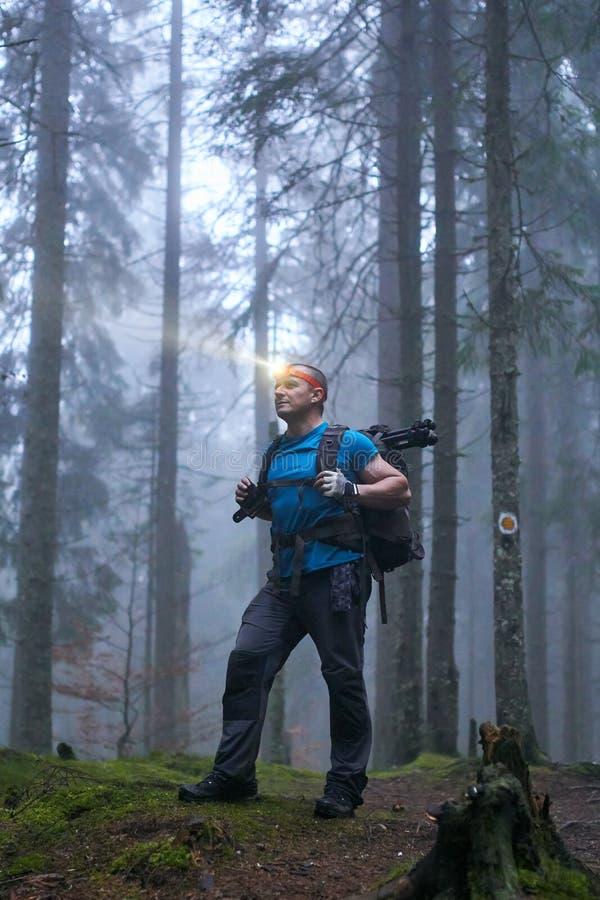 Άτομο με τον προβολέα και σακίδιο πλάτης στο δάσος στοκ εικόνες