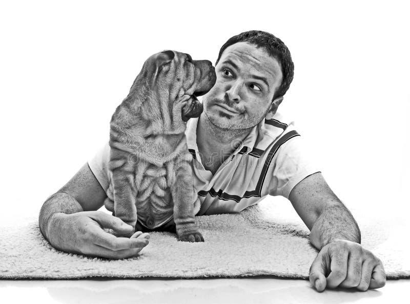 Άτομο με το κουτάβι sharpei γραπτό στοκ εικόνα με δικαίωμα ελεύθερης χρήσης