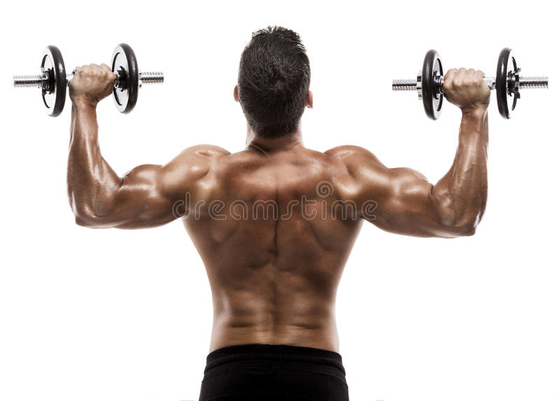 Άτομο μυών στοκ εικόνες με δικαίωμα ελεύθερης χρήσης