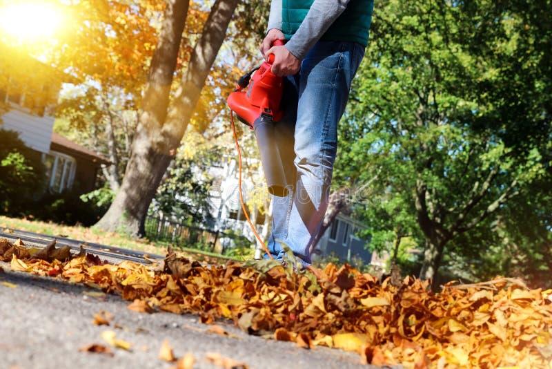 Άτομο που εργάζεται με τον ανεμιστήρα φύλλων: τα φύλλα στροβιλίζονται πάνω-κάτω μια ηλιόλουστη ημέρα στοκ εικόνες με δικαίωμα ελεύθερης χρήσης