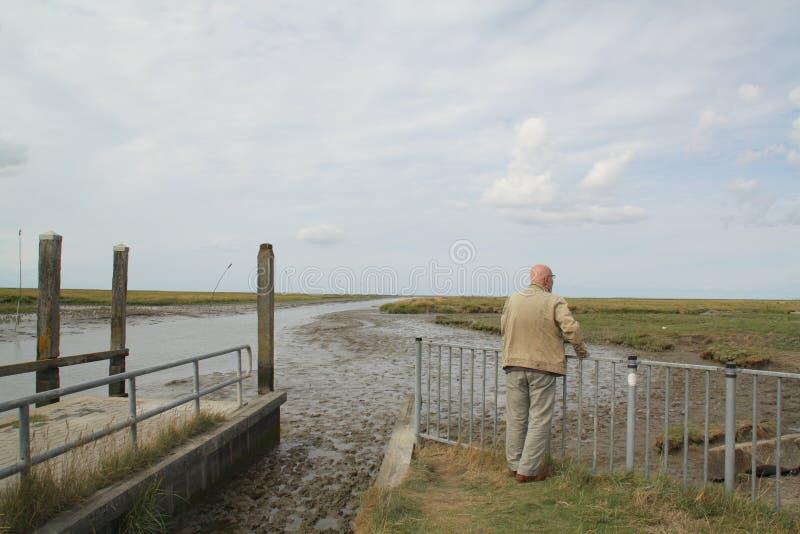 Άτομο που κοιτάζει πέρα από τα αλατισμένα έλη Noordpolderzijl στοκ φωτογραφία με δικαίωμα ελεύθερης χρήσης