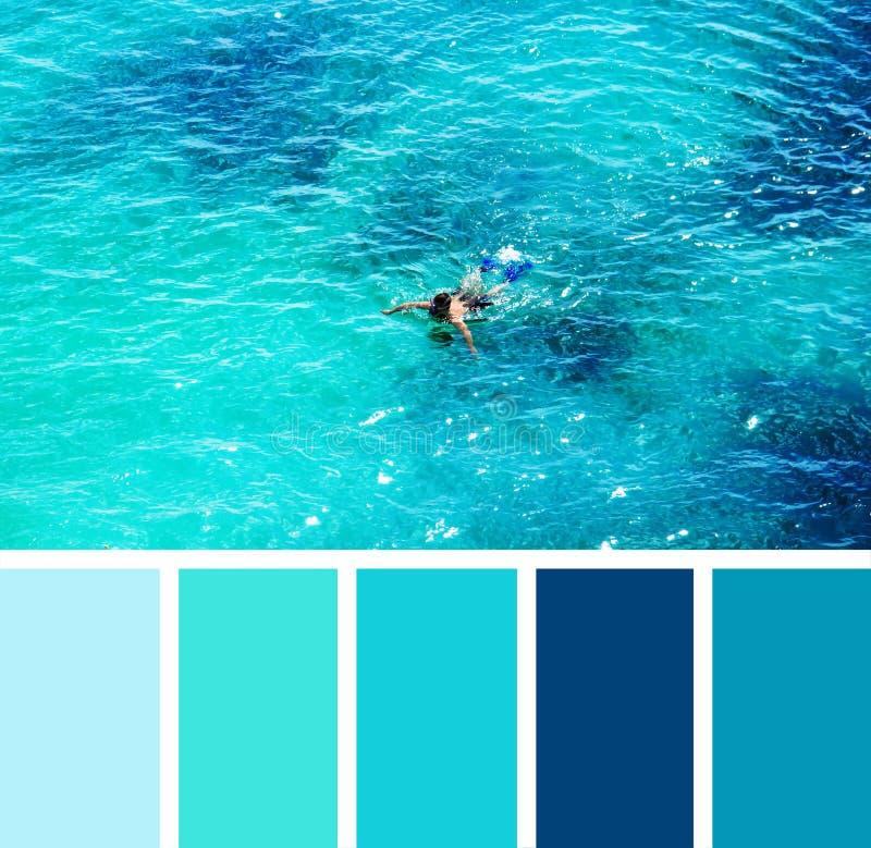 Άτομο που κολυμπά στη θάλασσα swatches παλετών χρώματος στοκ εικόνες